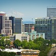 Portland Cityscape — Stock Photo
