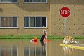 Bâtiment inondé — Photo