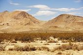 Mojave Desert Landscape — Stock Photo