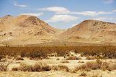 Mojave Desert Landscape — Stock Photo