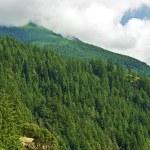Постер, плакат: British Columbia Mountains