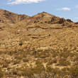 Stock Photo: Mojave Desert Landscape