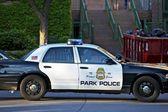 Minneapolis polis arabası — Stok fotoğraf