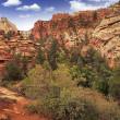 Utah Zion Landscape — Stock Photo