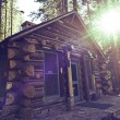 Mountain Cabin — Stock Photo #30569879