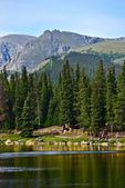 Scenic Colorado Echo Lake — Stock Photo