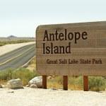 Antelope Island — Stock Photo