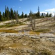 Yellowstone Park Scenery — Stock Photo #32369763