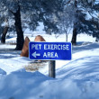 Pet Exercise Area — Stock Photo