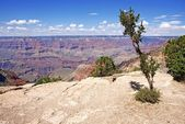 Geology of Grand Canyon — Stock Photo