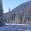 Colorado Winter Landscape — Foto de Stock