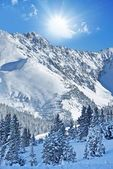 Alpine winterlandschap — Stockfoto
