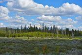 Wyoming Scenery — Stock Photo