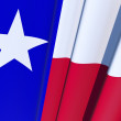 Texas State Flag — Stock Photo