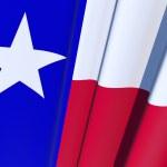Texas State Flag — Stock Photo