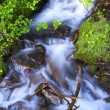 Stock Photo: Small Creek Stream