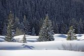 Snowy Landscape Wilderness — Стоковое фото
