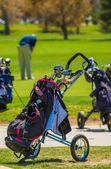 Push-Pull Golf Carts — Stock Photo