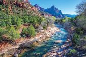 Spring in Zion National Park — Stock Photo