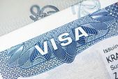 American Visa Closeup — Stock Photo
