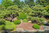 Spring Green Garden — Foto de Stock