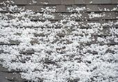 Hail on the Roof — Stock Photo