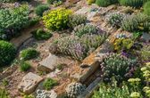 Rockery Garden — Stock Photo