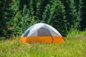 Tent on the Green Meadow — Stok fotoğraf