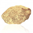 The Golden Nugget — Stock Photo