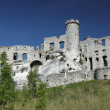 Stock Photo: Ogrodzieniec fortifications, Poland.