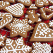 Gingerbread — Stock Photo #17159043