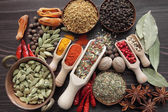 Blend of spices — Stock Photo