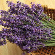 Bunch of lavender — Stock Photo