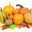 Pumpkins isolated — Stock Photo