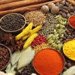 Indian spices — Stockfoto