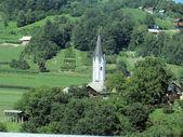 教会和树 — 图库照片