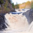 Waterfall Kivach in Karelia, Russia — Stock Photo #32956981