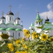 Russia. Murom. Spaso-preobrazhenskiy cathedral — Stock Photo