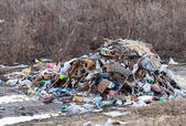 Stack of different types garbage in the wood — Stock Photo