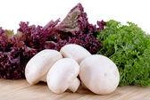 Heap of champignon mushrooms with salad — Stock Photo