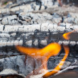 Summertime camp fire in woods — Stock Photo #36512639
