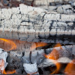 Summertime camp fire in woods — Stock Photo #36512649