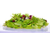 Salad mix with rucola, frisee, radicchio and lettuce — 图库照片