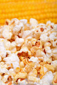 Sweet corn and popcorn — Stock Photo