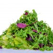 Salad mix with rucola, frisee, radicchio and lettuce — Stock Photo #37858185