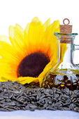 Fresh Sunflower seeds and oil — Stock Photo
