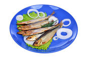 Smoked fish and salad on a blue plate isolated on white background — Photo