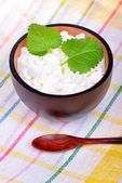 Fresh cottage cheese with mint leaves — Foto de Stock