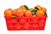 Tangerine or mandari n fruit in the basket isolated on white background — Stok fotoğraf