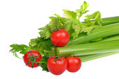 Celery and cherry tomatoes isolated on a white background — Stock Photo